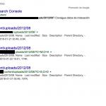 Des-indexado Masivo de Parámetros dinámicos en Google